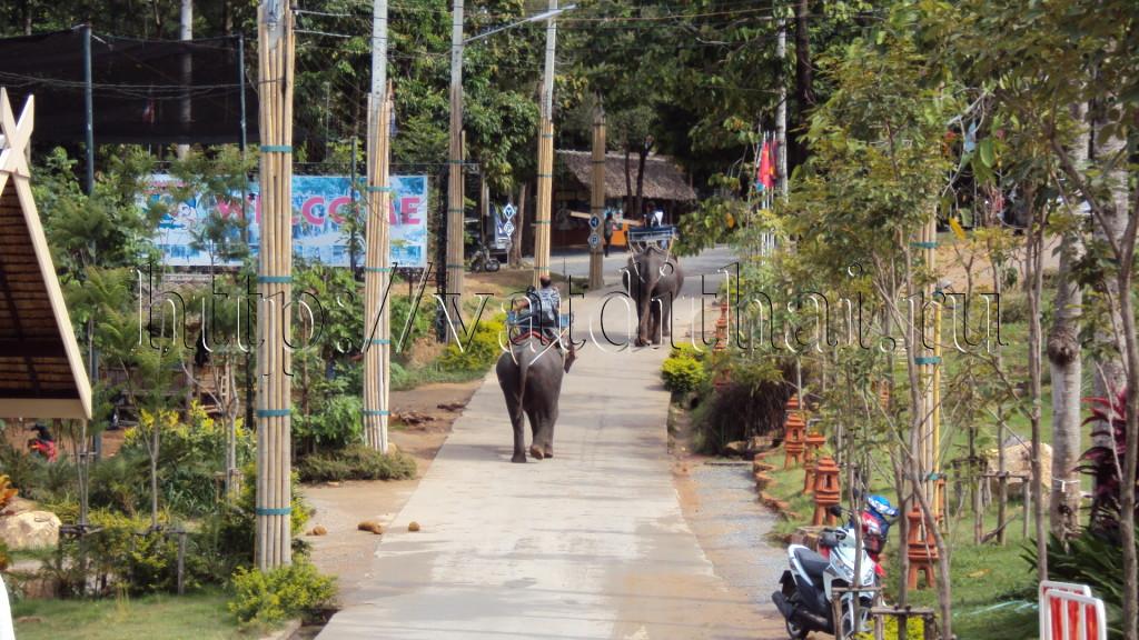 Остров Самуи Тайланд достопримечательности