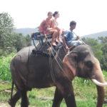 Национальный парк Кхауяй поменял режим работы