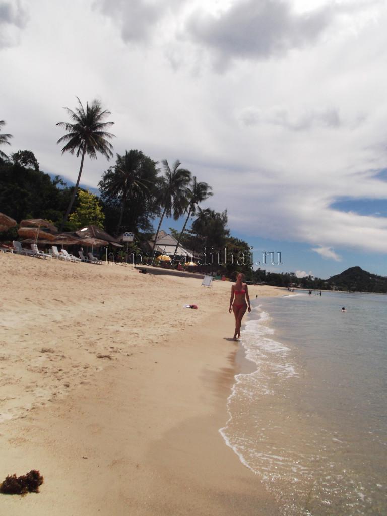 Остров Самуи в Тайланде отели