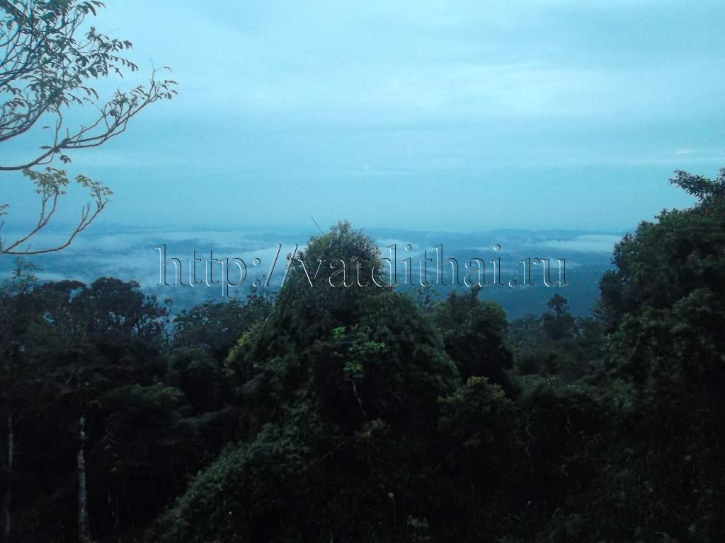 Тропические леса парка Кхуаяй