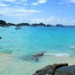 Как добраться до Симиланских островов