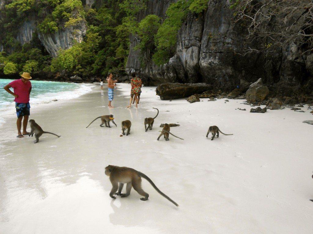 остров Ко Лан в Тайланде