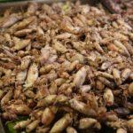 Почему тайская еда опасна: блюда и напитки в Таиланде, которые стоит пробовать осторожно
