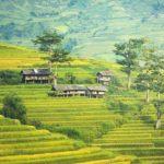 Россия помогает улучшить урожайность в Таиланде