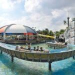 Как добраться до парка развлечений Siam Amazing Park